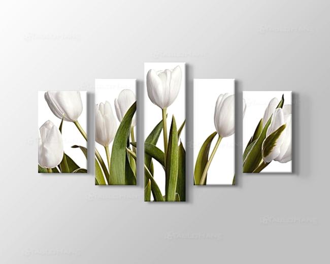 Beyaz Laleler Tablo Modelleri ve Fiyatları